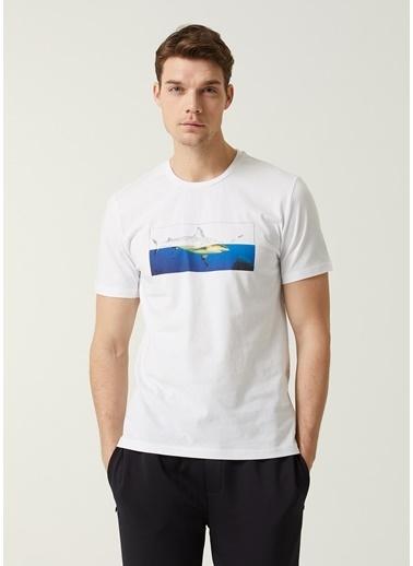 Beymen Club Beymen Club 101449050 Bisiklet Yaka Kısa Kollu Köpekbalığı Baskılı  Erkek T-Shirt Beyaz
